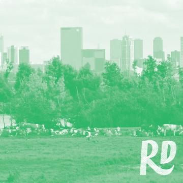 Vanaf deze 10 plekken zie je de Rotterdamse skyline op z'n mooist